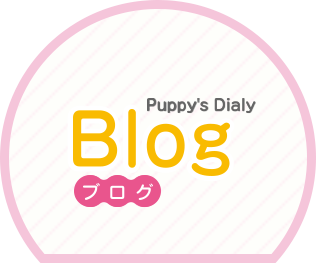 Puppy's Dialy Blog